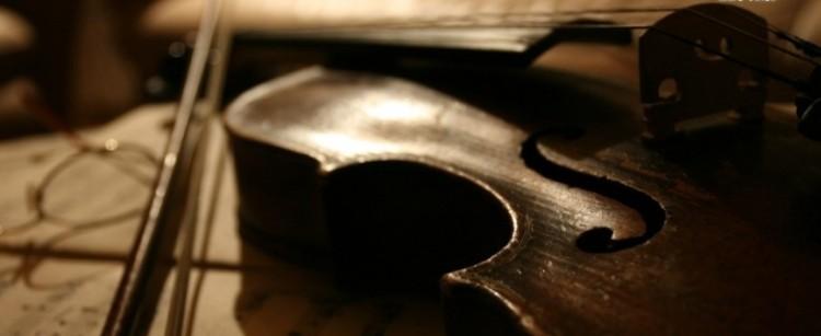 Violines